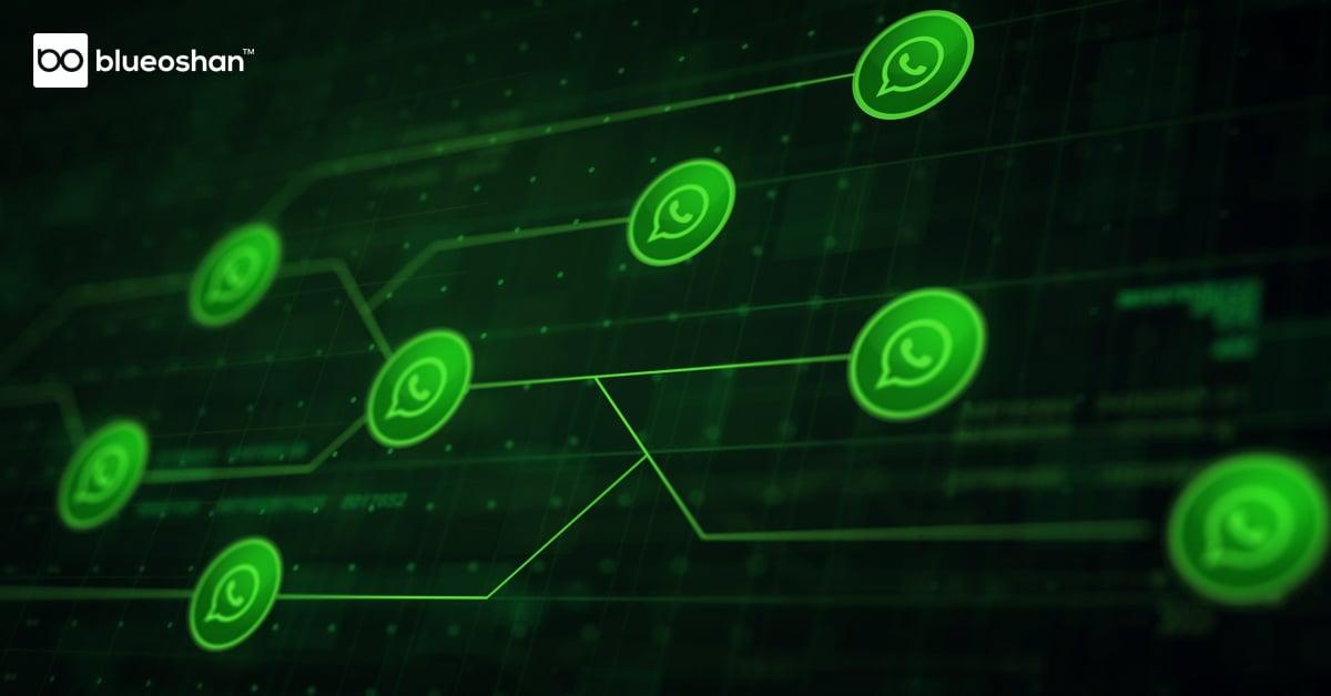 BO_WhatsappAutomation_Blog1