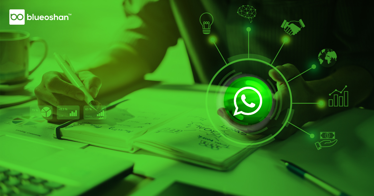 BO_WhatsappAutomation_Blog3